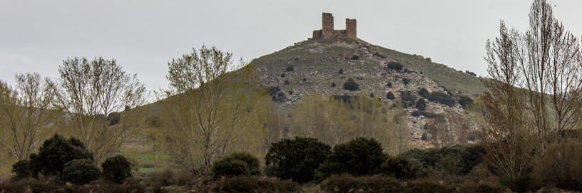 PAN-Santed-2,-Zaragoza.-ALC.jpg