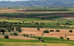 El valle del Jiloca, un espacio natural e histórico de primera magnitud en las provincias de Zaragoza y Teruel / ALC.