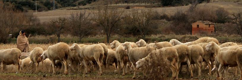 Burbáguena, Teruel.