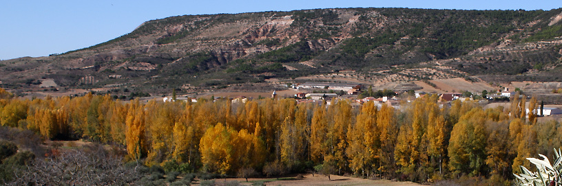 Chopera en Muduex, Guadalajara.