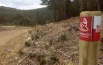 Señal del Camino del Cid en la Sierra de Albarracín. Junto a la imagen corporativa aparece un código QR que remite a la página web de la ruta