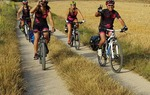 El Camino del Cid para bicicleta todo terreno BTT - MTB tiene una longitud total de 1.485 km. Está dividido en 7 rutas de entre 49 km y 313 km. Aunque en su mayor parte discurre por caminos rurales y senderos, en algunos pequeños tramos puedes encontrarte con carreteras secundarias con escaso tráfico / ALC.