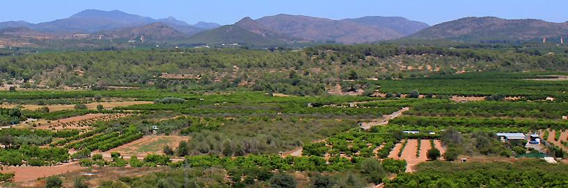 Torres Torres, Valencia