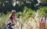 Las balizas con señalización BTT - MTB se encuentran en los tramos en los que la ruta de bici se separa de la senderista / ALC.