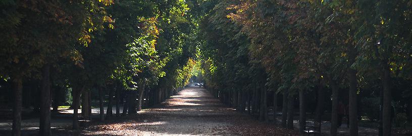 Paseo de la Isla, Burgos.