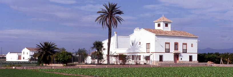 Huerta de Alboraya, Valencia.
