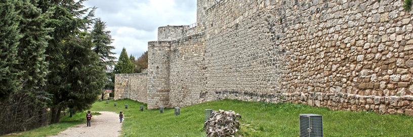 El castillo de Burgos.