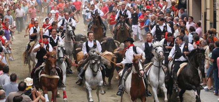 La Entrada de Toros y Caballos de Segorbe, uno de los espectáculos más intensos que tienen lugar en el Camino del Cid
