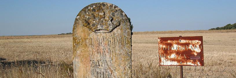 Zayas de Torre, Soria