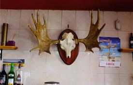 Bar de Orihuela del Tremedal