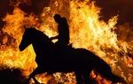 """El Cid fue en vida un guerrero temido y un poderoso señor de la guerra con grandes aptitudes como estratega y como diplomático. Los apodos por los que es conocido los obtuvo por méritos propios: """"Cid"""" proviene del árabe y quiere decir """"señor""""; """"Campeador"""" proviene del latín """"campidoctoris"""" que viene a significar ducho o maestro en el campo de batalla. / José Beut Duato."""