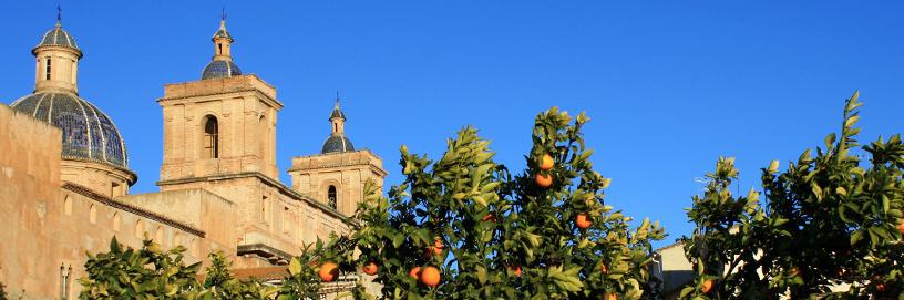 Sot de Ferrer, Castellón