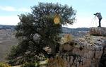 Cazando paisajes en el Camino del Cid / ALC.