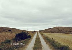 Camino rural en la salida de Modúbar de San Cibrián