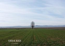 Junto al Jiloca / Gontzal Largo
